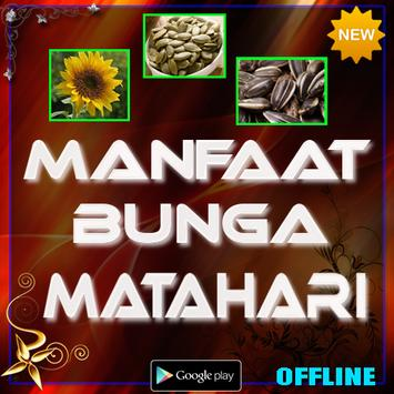 Manfaat Bunga Matahari apk screenshot