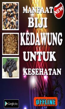 Manfaat Buah Biji Kedawung poster