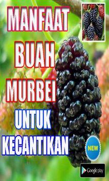MANFAAT BUAH MURBEI UNTUK KECANTIKAN poster