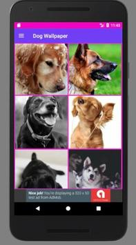 Dog Wallpaper poster