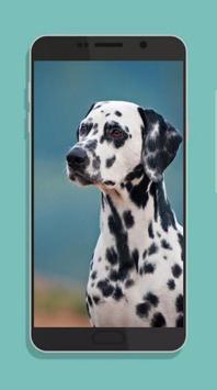 Dog Wallpaper screenshot 3