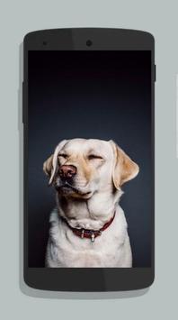 Dog Wallpaper screenshot 5
