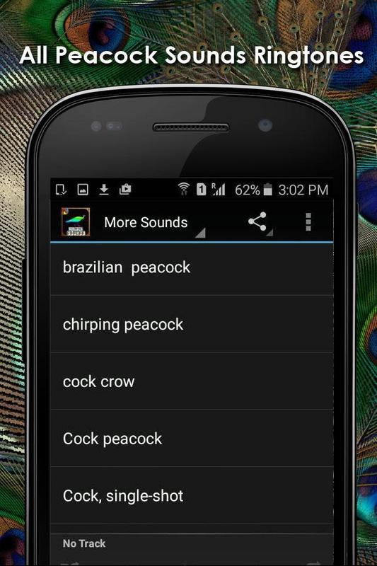rooster alarm ringtone for phone
