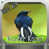 MASTER KACER icon