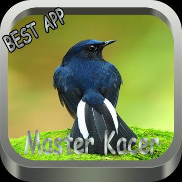 MASTER KACER apk screenshot