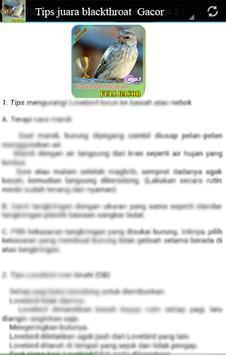 Masteran  kicau : burung blackthroat juara screenshot 1