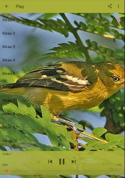 Master Kicau Burung Cipoh apk screenshot