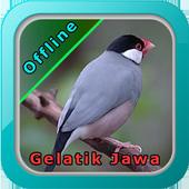 Master Kicau Gelatik Jawa icon