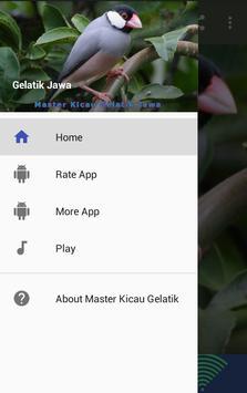 Master Kicau Gelatik Jawa poster