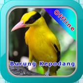 Master Kicau Burung Kepodang icon
