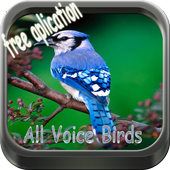 Therapy BirdsSong icon