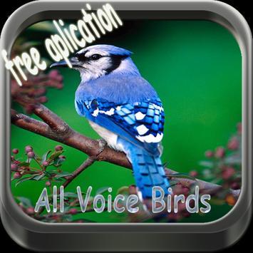 Therapy BirdsSong screenshot 5