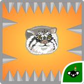 Pallas Cat icon