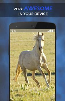 Horse Wallpaper apk screenshot