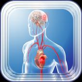Stroke Disease icon
