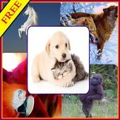 Best Animals HD  Wallpapers icon