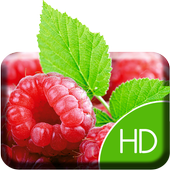Sweet Raspberry Live Wallpaper icon