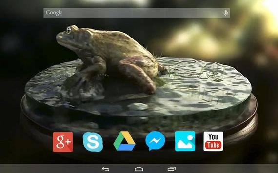 Wild Frog Live Wallpaper apk screenshot