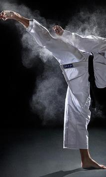 Sport Judo Fans Wallpapers Themes poster