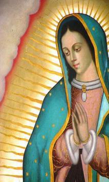 Fotos De Virgen De Guadalupe poster