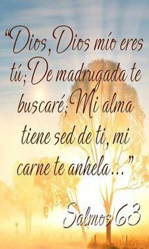Frases De Dios De Esperanza apk screenshot