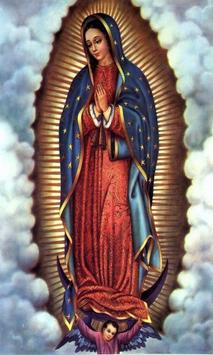 Images Of Virgen De Guadalupe poster