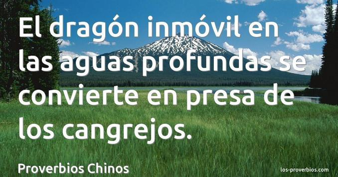 Proverbios Chinos De Trabajo apk screenshot