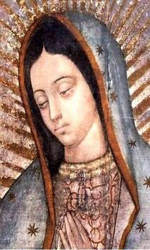 Virgen De Guadalupe Dibujo Hermoso poster