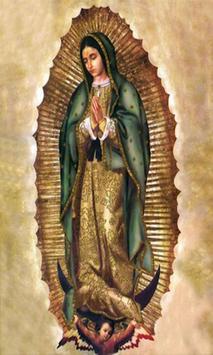 Virgen De Guadalupe Festival In Mexico apk screenshot