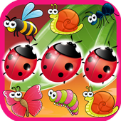 insect Matching icon