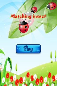 insect Matching poster