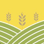 Market 2day icon