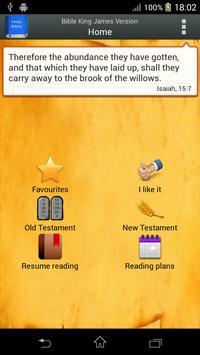Bible King James Version poster