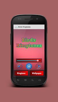 Birds Ringtones apk screenshot