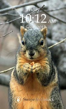 Squirrel Keypad Lock Screen apk screenshot