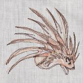 SpinningPorcupine icon
