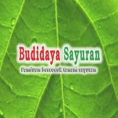 Hortikultura Budidaya Sayuran icon