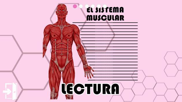 El Sistema Muscular APK Download - Free Education APP for Android ...