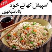 Desi Special Khanay Urdu icon
