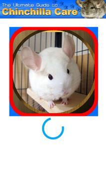 Chinchilla Care poster