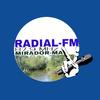 Radial FM 87 icon