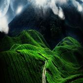 Green Mountain Wallpapers icon