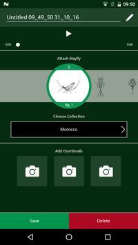Mayfly Sound apk screenshot
