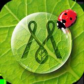 자연놀이 증강현실 카드 - 메이아이 icon