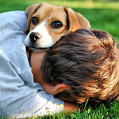 Dog with Boy Theme Wallpapers icon