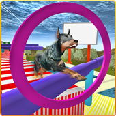 Real Dog Stunt & Jump Derby 3D icon