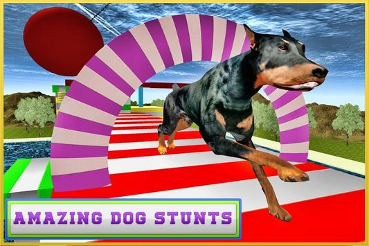 Real Dog Stunt & Jump Derby 3D poster