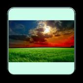 TamilWriters app mectcse icon