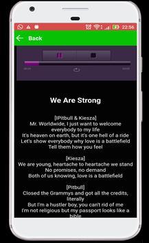 Pitbull Lyrics & Play screenshot 3
