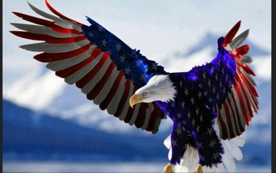 USA Flag Wallpapers apk screenshot